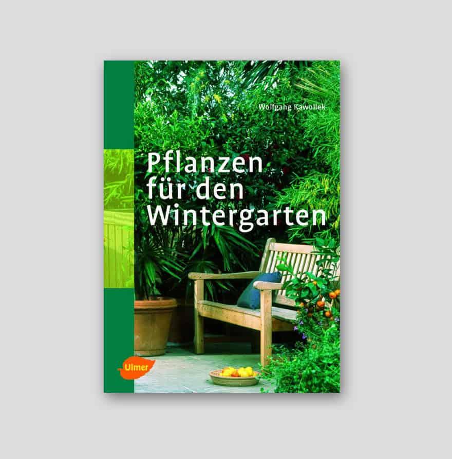 pflanzen f r den wintergarten g rtnerei schwitter ag. Black Bedroom Furniture Sets. Home Design Ideas