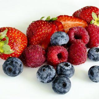 news-beeren-traum-berries