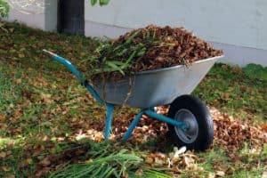 Herbstarbeiten-autumn-494390_1280