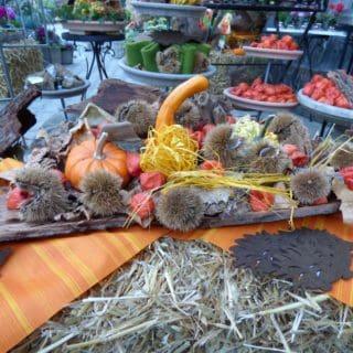 Herbstschalen