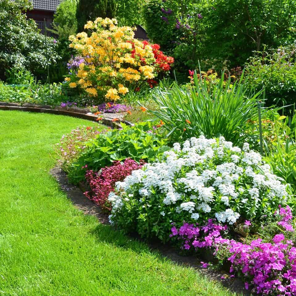 Planen sie jetzt schon ihren traumgarten 2018 g rtnerei for Gartenbepflanzung planen