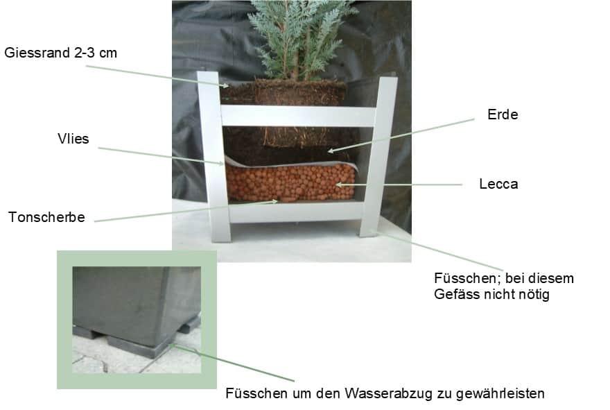Gefaess bepflanzen