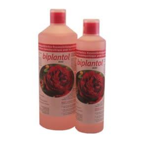 Biplantol Rose