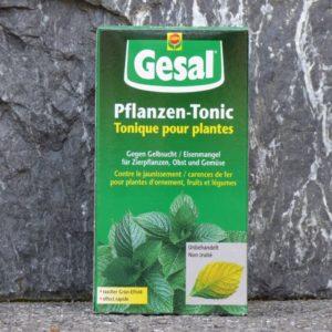 Gesal_Pflanzen-Tonic